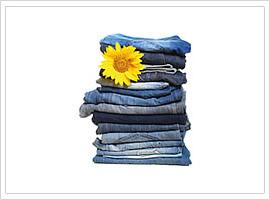 Alvito Waschsystem