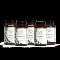 Vitamunda Magen-Darmpaket